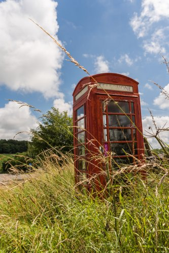 A telephone box in overgrown grass