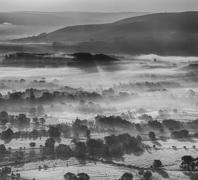 Misty Mono Shadows